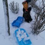 Žiema mums dovanojo daug daug sniego.