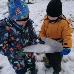 Atradome kieme daug ledo.