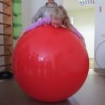 Mankšta ant kamuolio