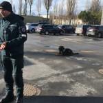 Kinologo ir policijos šuns pasirodymas